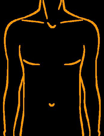 straffe-brust